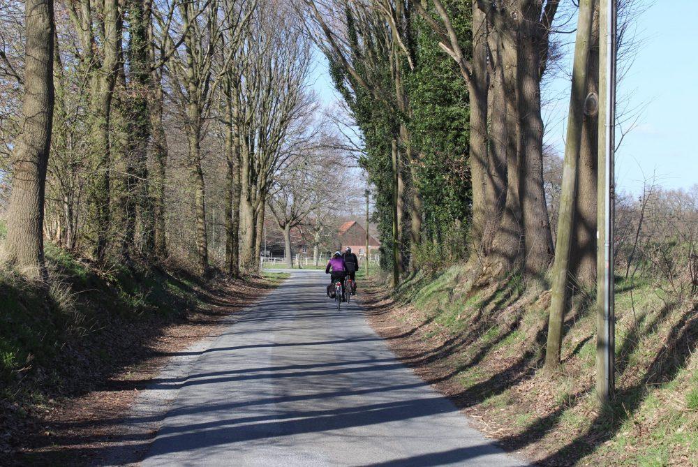 Ostbevern Touristik e.V. - Allee mit Radfahrenden