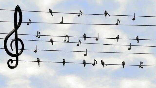 Beverhofmusik